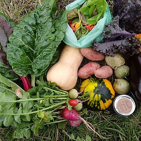 It's getting to be CSA time y'all! Tha b