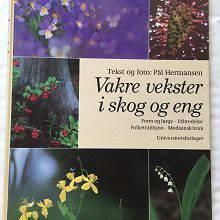 hermansen-paal-vakre-vekster-i-skog-og-e