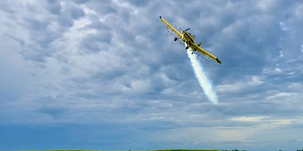 Aviation Pick Day - Sunday