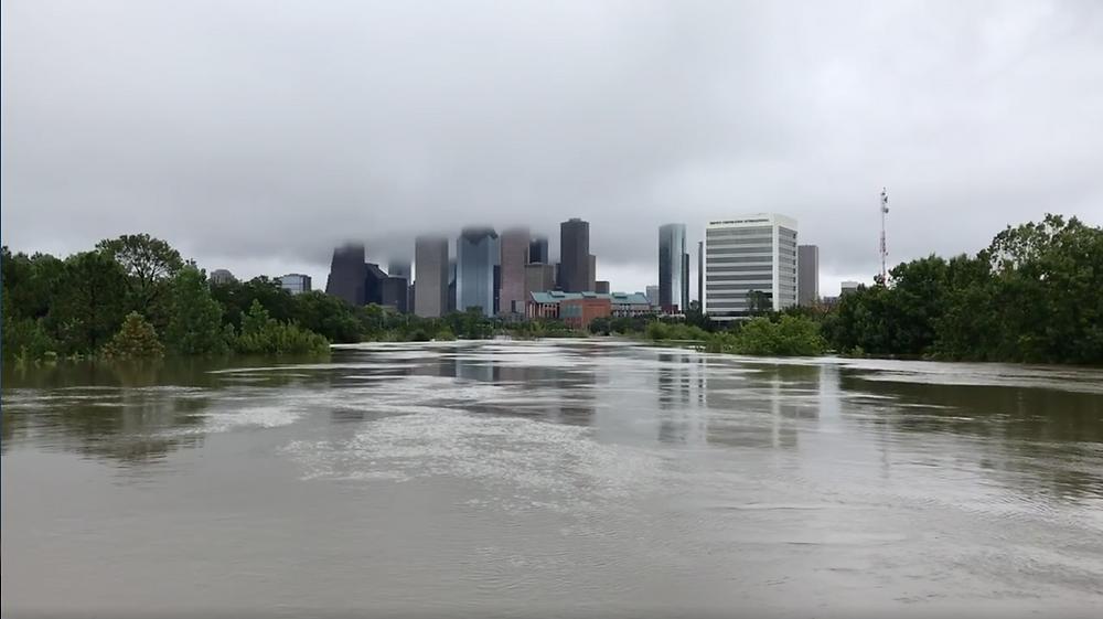 Harvey Flooding (Buffalo Bayou) - photo by Dolores Hernandez
