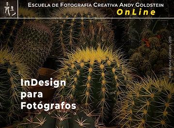 INDESIGN_ONLINE_A.jpg