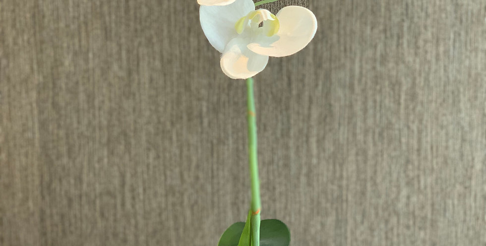 Fake Small Orchid