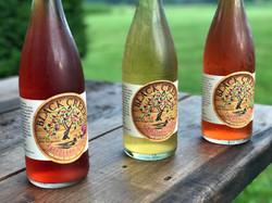 Cider Line Up