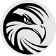 IronHawk Financial Logo