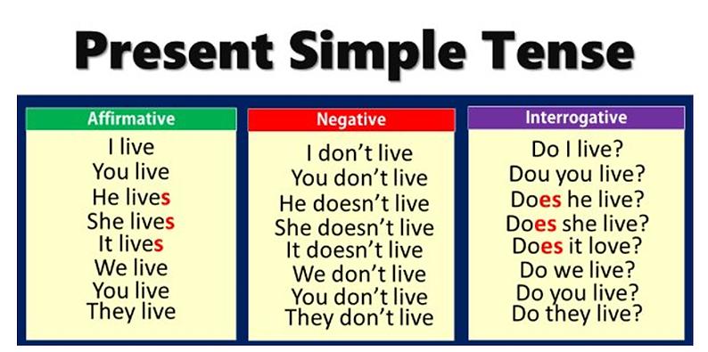 PRESENT SIMPLE TENSE.png