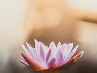 Sous hypnose : un reportage pour mieux comprendre l'hypnose