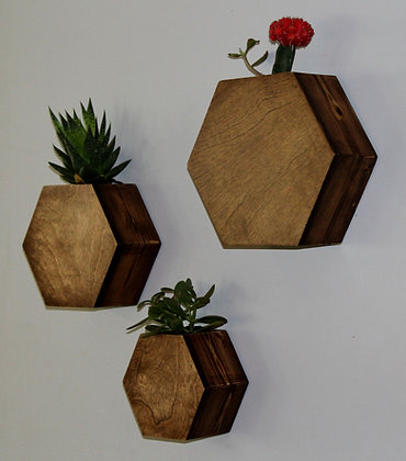 Hexagon Wall Planters - Set of 3