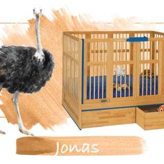 lit d'enfant Jonas