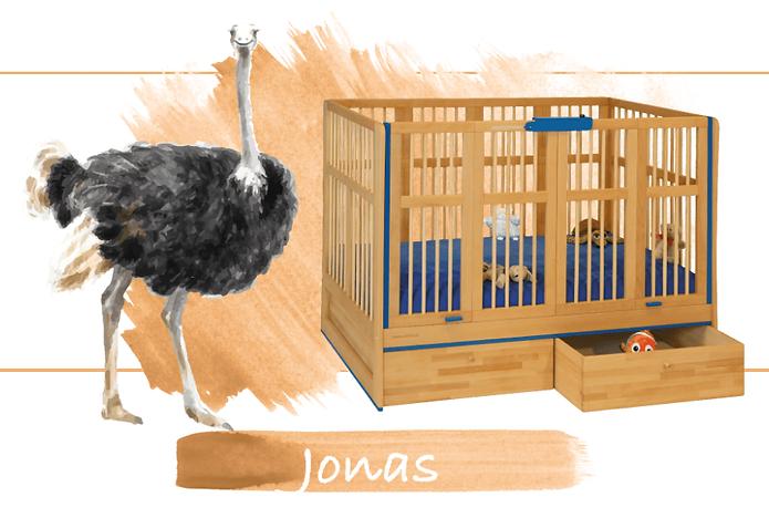 Kinderbett Jonas.png