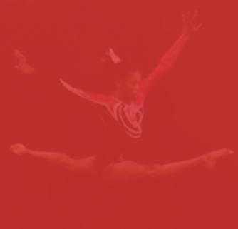 flexibilitybg.png