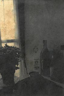 Inside the window III.jpg