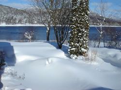 The yard in winter