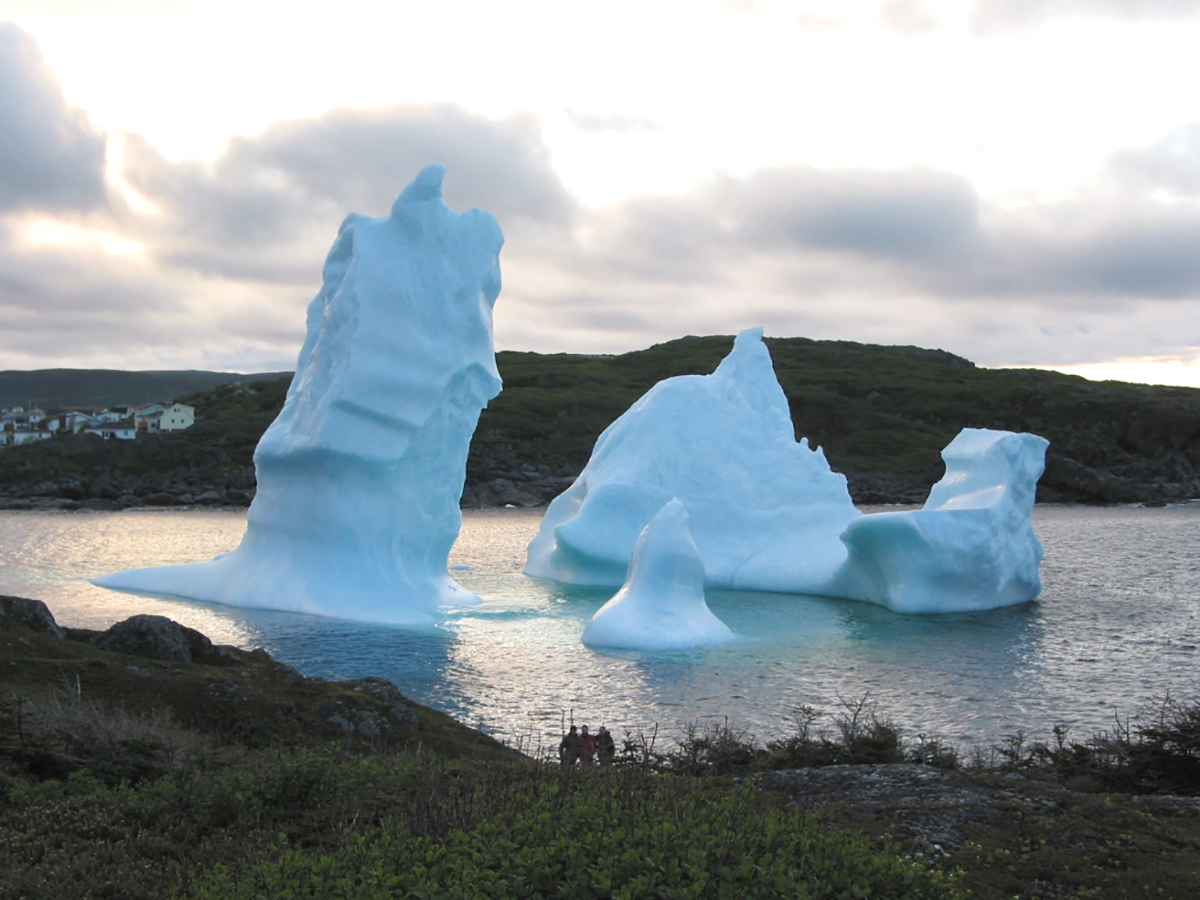 Come see the icebergs