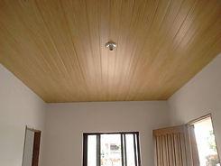 pvc ceiling.jpg