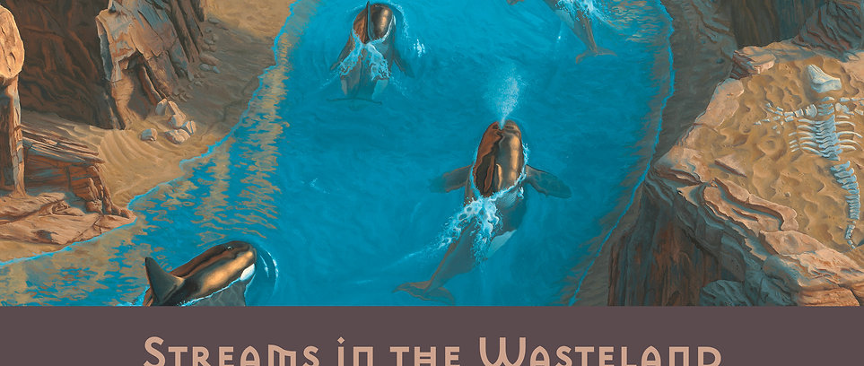 Streams in the Wasteland (Gallery Edition)