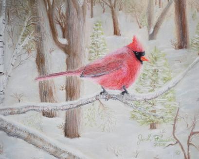 Carl The Cardinal