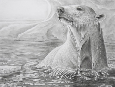 Polar Emergence