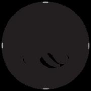 JTSG-Press-Logo-circle-(black).png