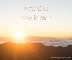 New Miracle