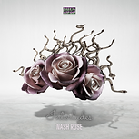 nash-rose-music-interludes.PNG