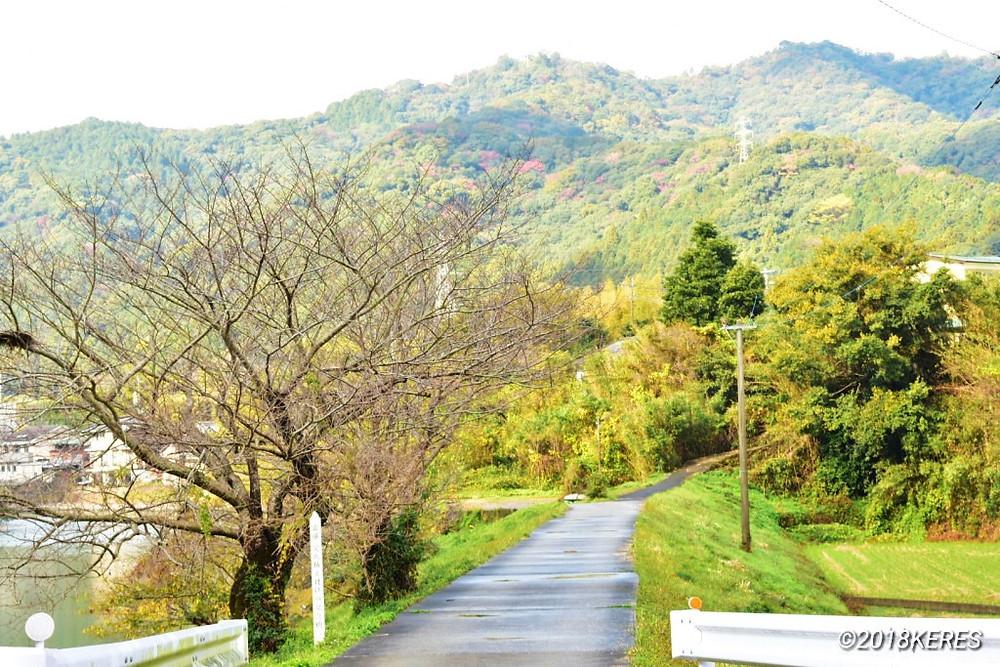 臼杵川沿いのお散歩コース