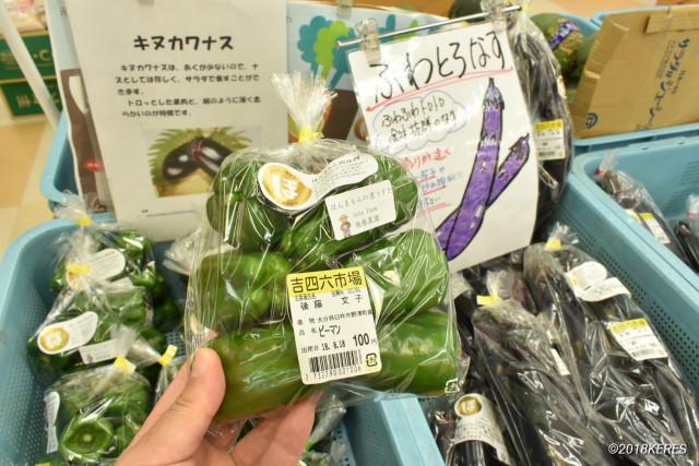 臼杵の有機野菜「ほんまもん野菜」