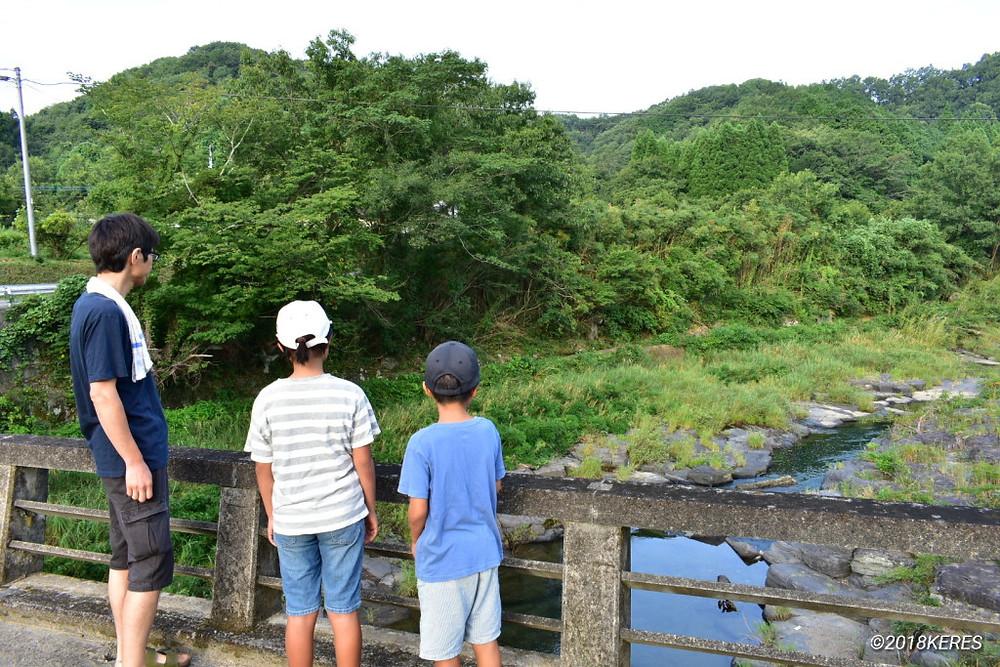 大分県臼杵市野津町の自然