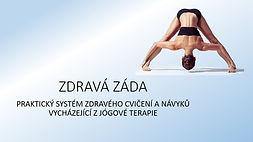 ZZ upoutavka web.jpg