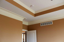 Madison Home Ceiling