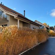 Villas individuelle à Lussy-sur-Morges