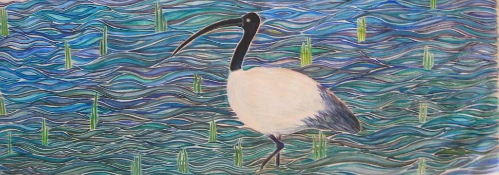 Ibis Sagrado-ibis