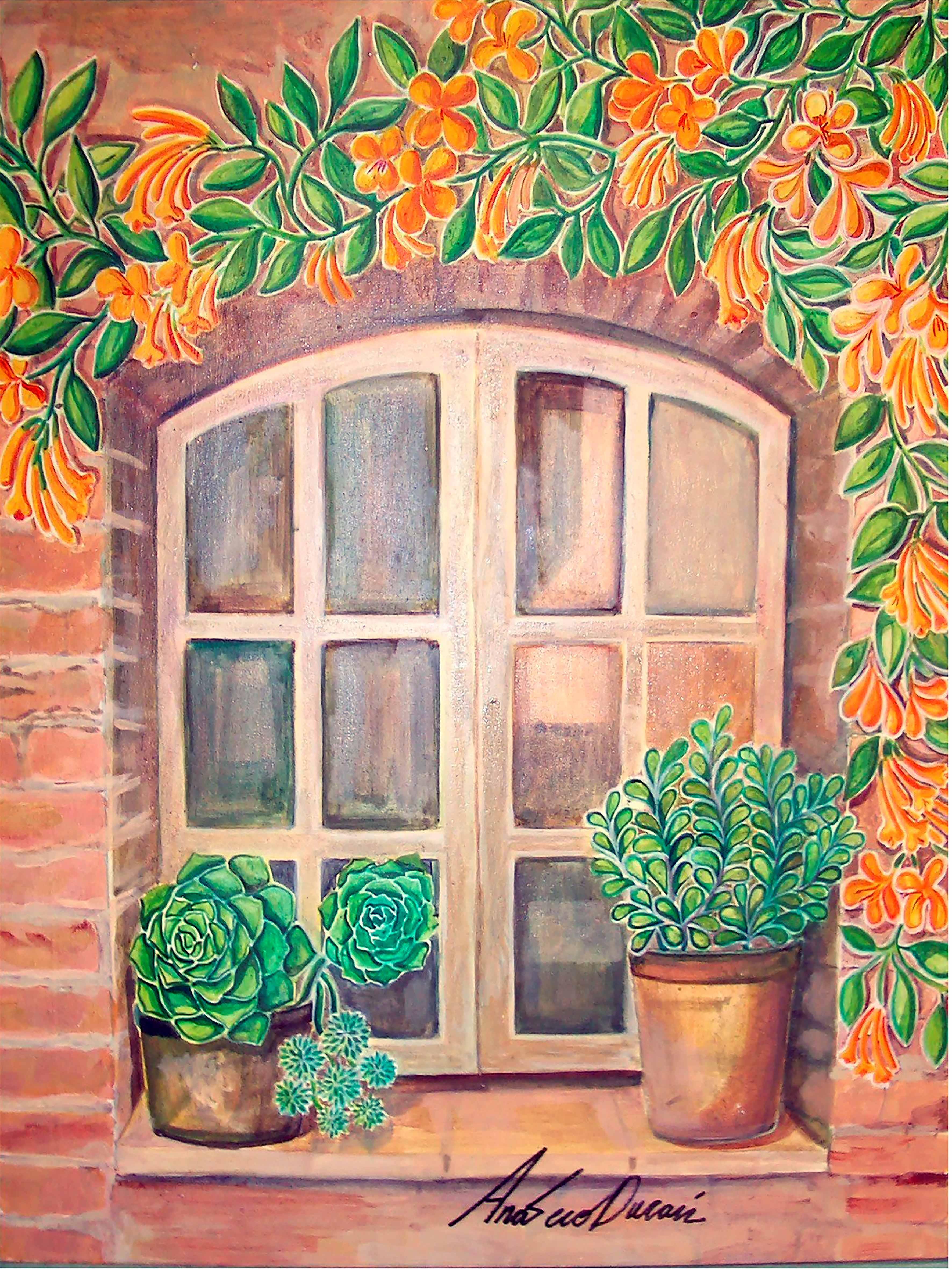 Ventana-WINDOW-