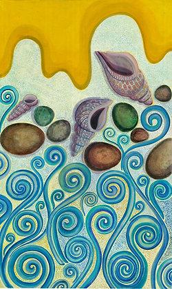 sea shell-caracola