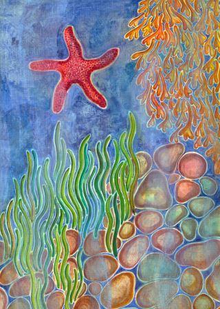 Estrella de mar-SEA STAR