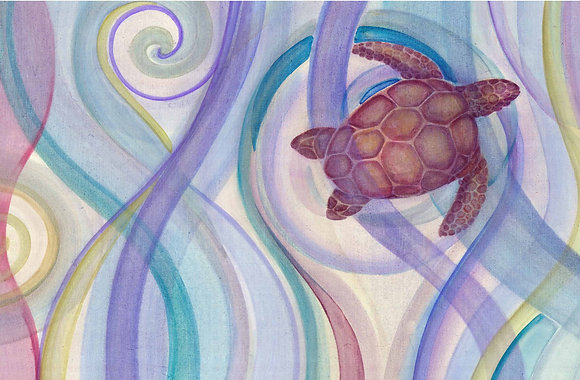 Sea turttle- tortuga boba