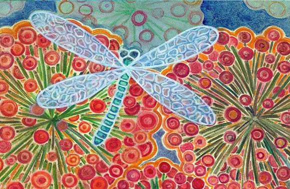 Dragon fly-libelula