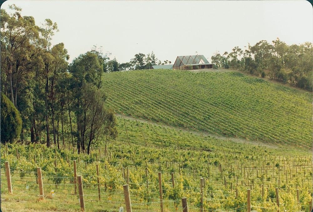 冷溪山酒庄 (Coldstream Hills)
