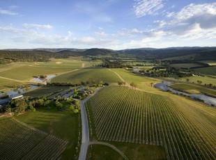 澳洲葡萄酒探索——雅拉谷(3)