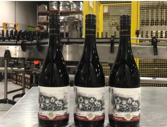 """被称作""""小西拉""""的葡萄品种——杜里夫"""