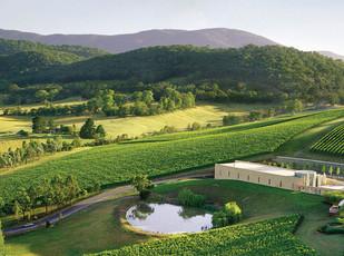 澳洲葡萄酒探索——雅拉谷(2)