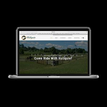 Holiquin-Website.png