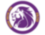 ACS Athletics logo.png