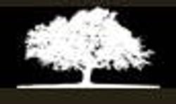 logo_whizin