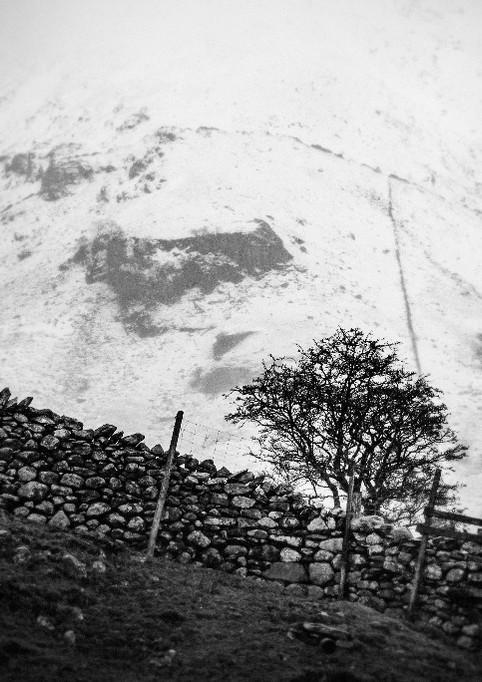 Desolate Scotland