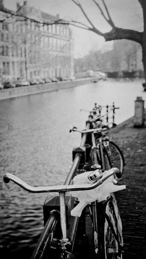 Bicycles_Amsterdam, The Netherlands 1982