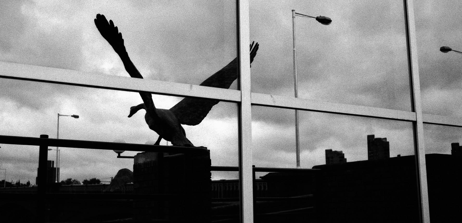 Battersea Bridge,_London, England 1985