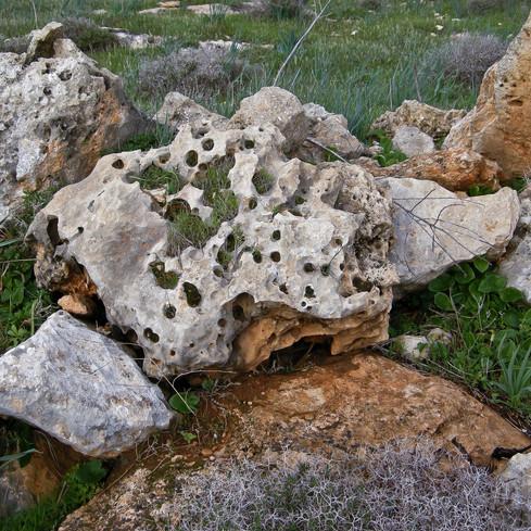 Stones_Northern Cyprus 2009