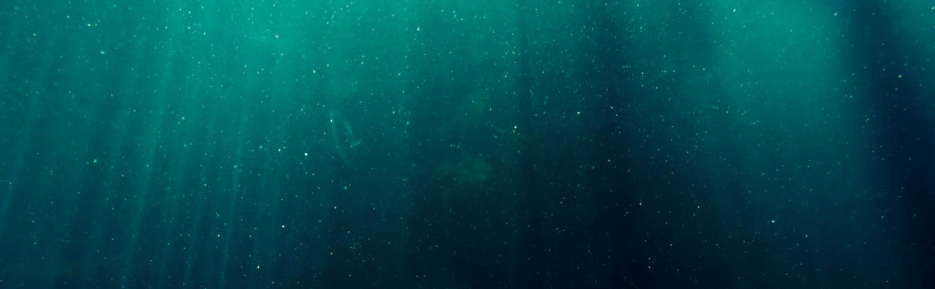 Under ocean .png
