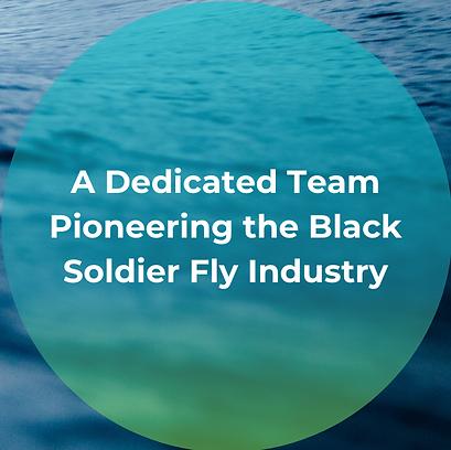 A dedicated Team Pioneering the Black So
