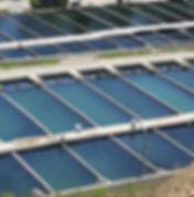fish-farm-871282057819CTpF.jpg
